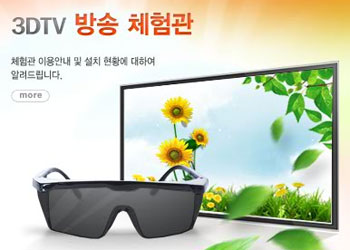 Korea 3D TV Safety Guidelines